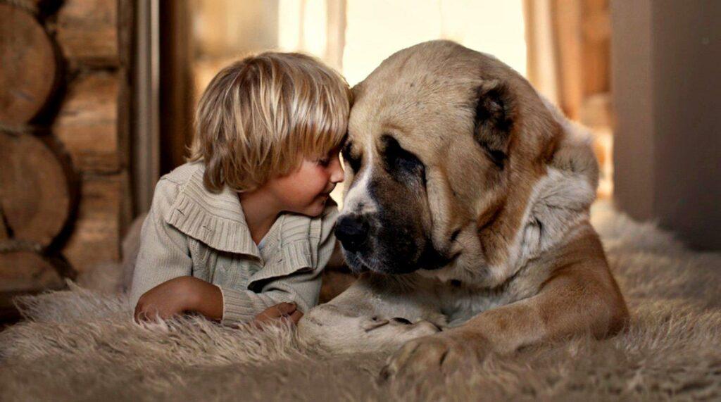 зачем детям нужна собака