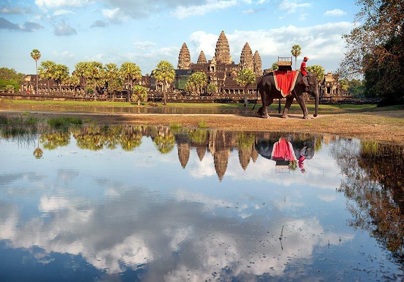 Слоны Ангкор-Ват