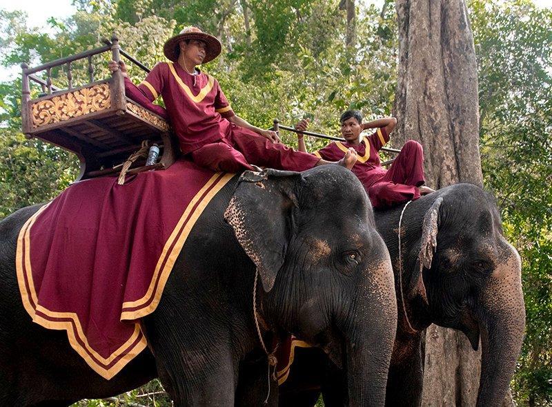 Погонщики слонов