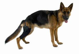 Kruuse Rehab протектор на правое колено