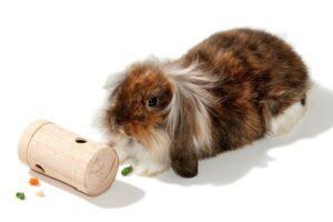Karlie Интерактивная игрушка для грызунов, цилиндр