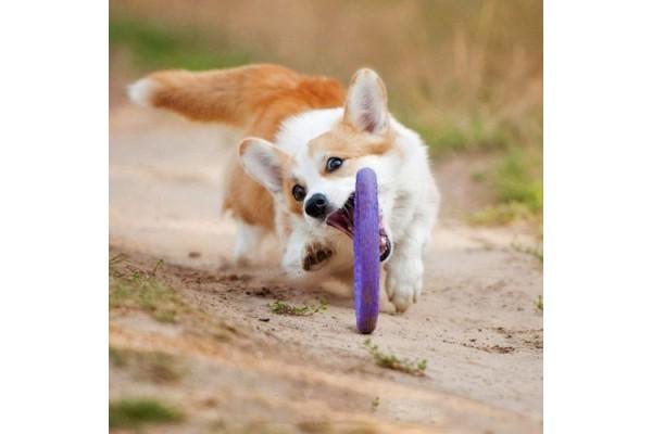 Тренировочный снаряд для собак Puller Mini, диаметр 18 см
