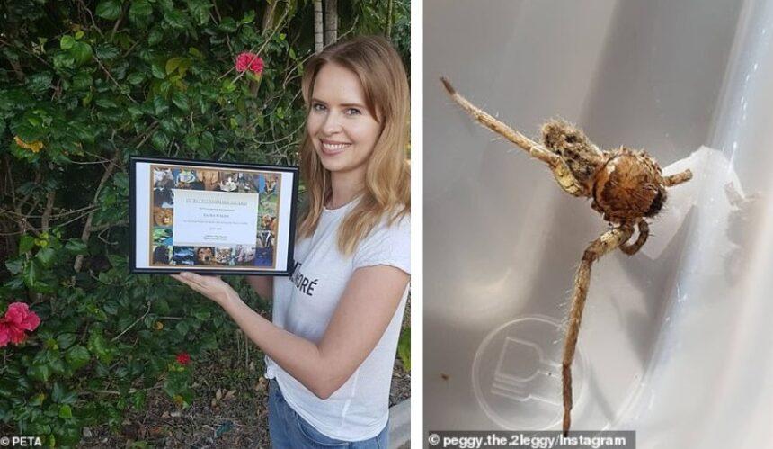 Девушка ухаживала за пауком и получила за это почетную награду