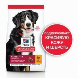Hill`s Science Plan Adult Large  сухой корм для взрослых собак крупных пород для поддержания здоровья суставов и мышечной массы курица