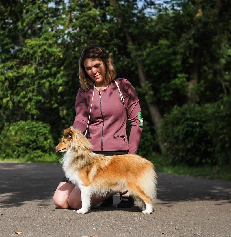 Собака породы Шелти с хозяйкой