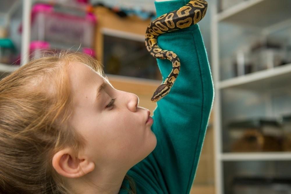 5 st 3 - Королева пауков: 8-летняя девочка держит в своей спальне 50 тарантулов, змей и скорпионов