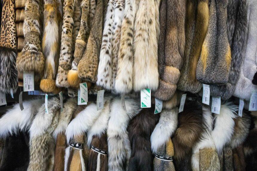 Nordstrom запрещает продажу изделий из меха и кожи экзотических животных