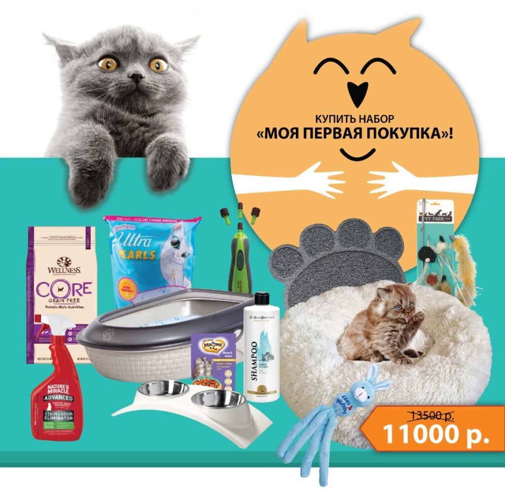 557648579780 1024x992 - Все для котенка
