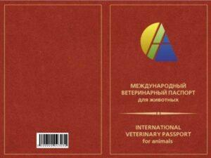 АСМ Паспорт ветеринарный (для кошек)