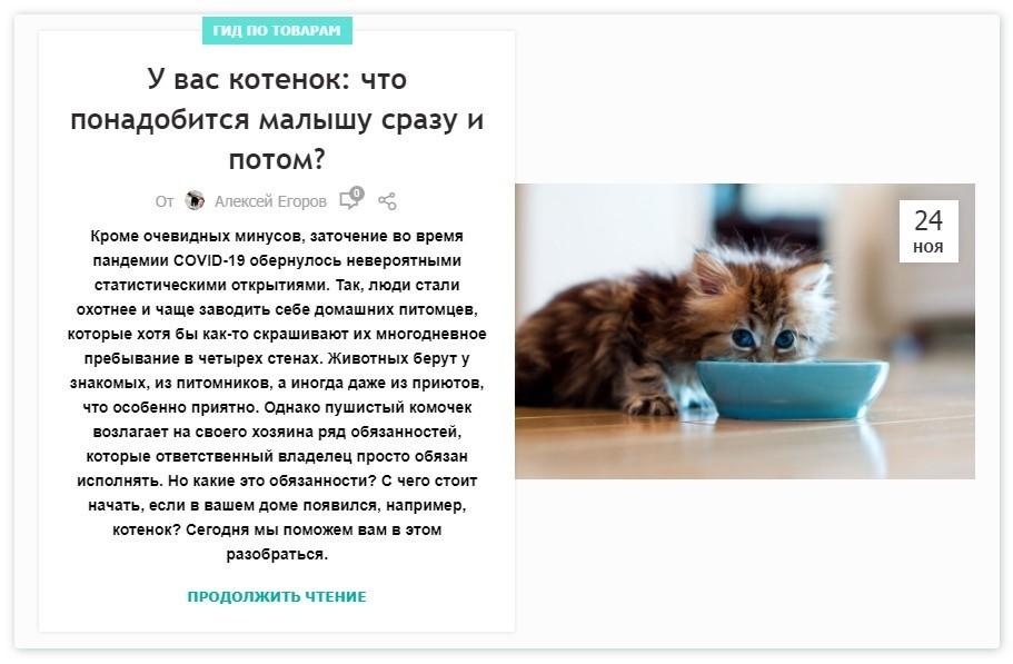 Все для котенка