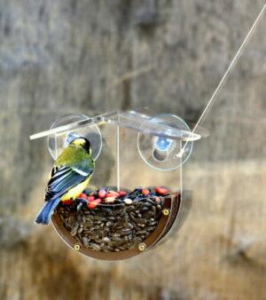 небольшая прозрачная кормушка для птиц