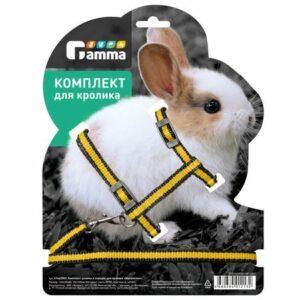"""Комплект шлейка и поводок для кролика из капрона """"Мегаполис"""". 140*220*80; 10*1200мм"""