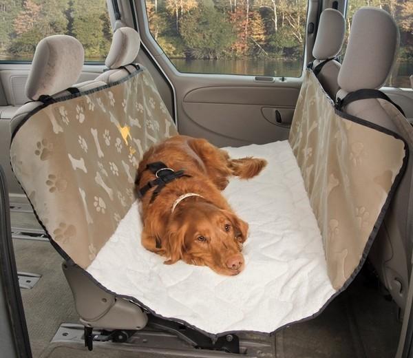 собака в гамаке в машине путешествие