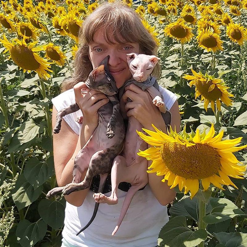Хозяйка Олеся с кошками Луней и Шайбой породы украинский левкой